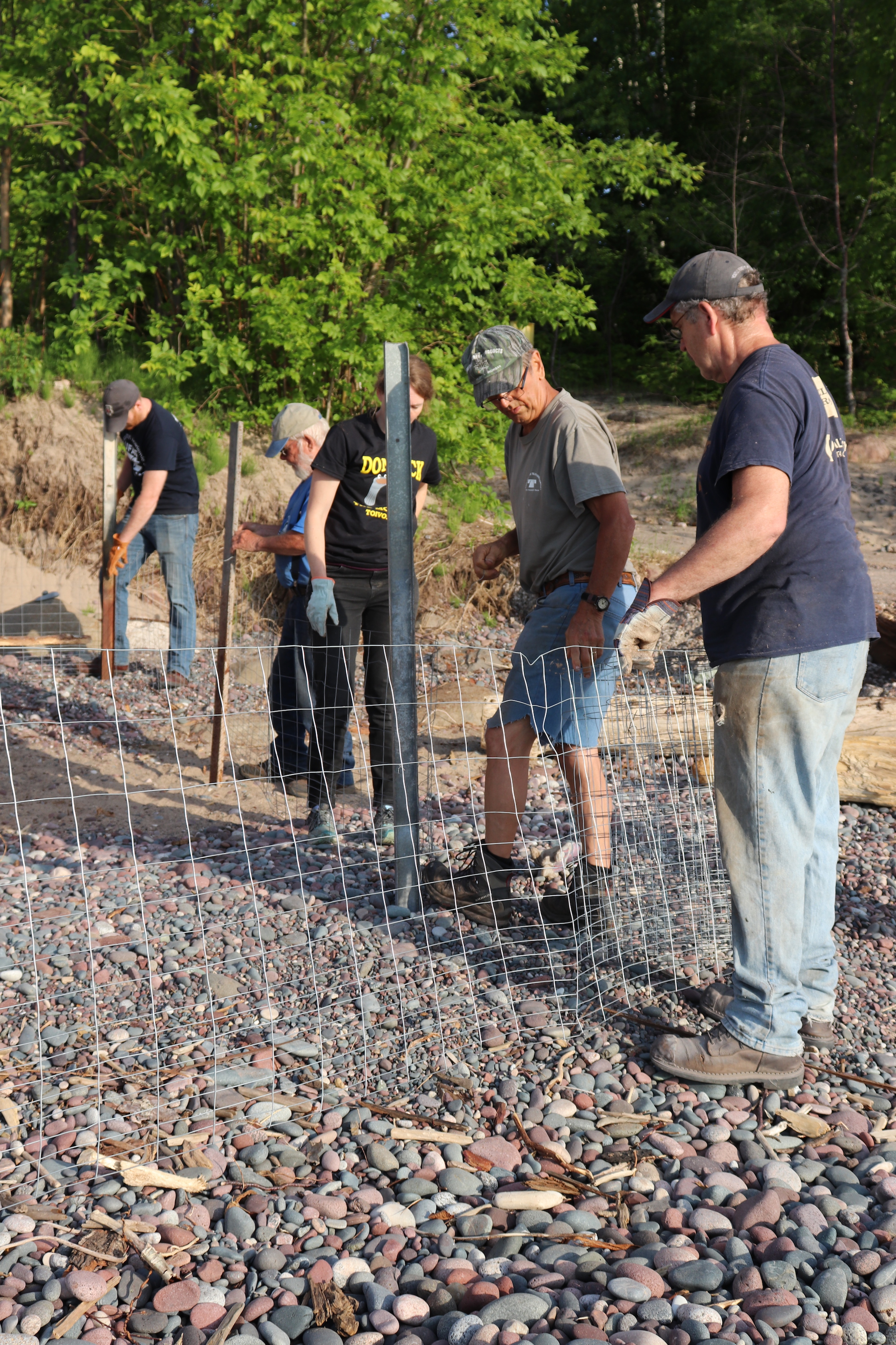 Volunteers unroll the wire mesh to build a safety fence around the bonfire.