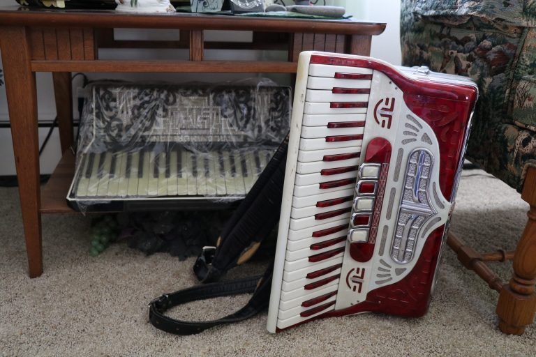 Red accordion sitting on the carpet