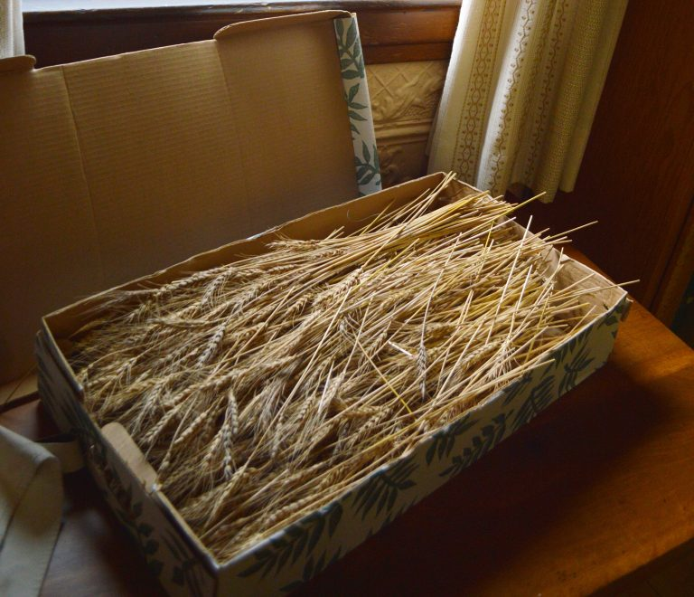box of straw
